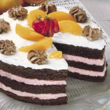 Chocolate Ice Cream Cake