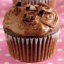 Double Chocolate Cocoa Cupcakes