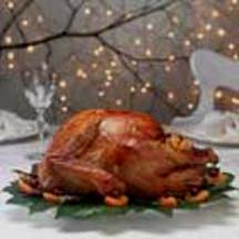Roast Turkey with Cranberry-Apricot Stuffing