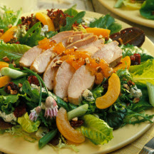Ham & Pork Salad Recipes
