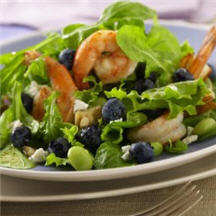 Blueberry Shrimp Salad
