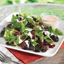 Fruity Green Salad with Ruby Pomegranate Dressing