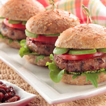 Vegetarian Sandwich & Veggie Burger Recipes