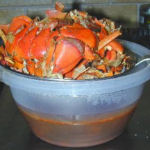 Maine Lobster Stock